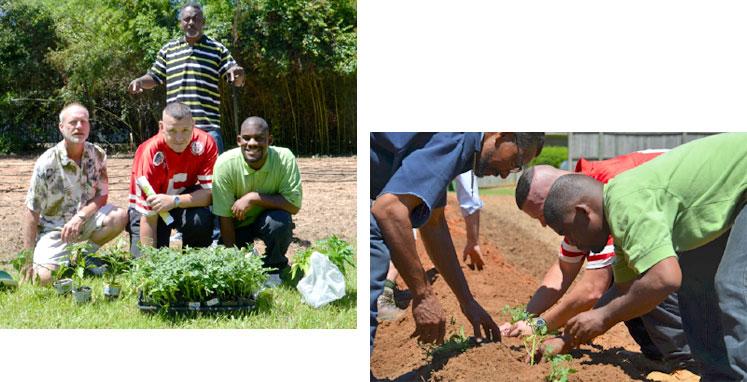 group-home-gardening